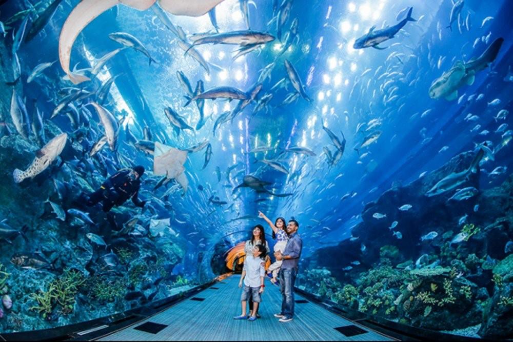 S.E.A. Aquarium (Marine Life Park)